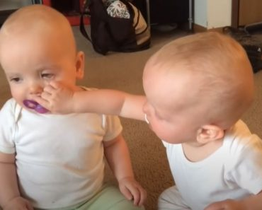 Twin baby fight over pacifier - Funny video