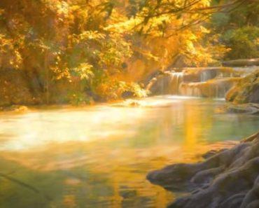 Beautiful Relaxing Music - Peaceful Piano Music and Guitar Music