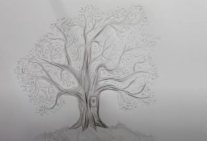 How to Draw a Tree with Pencil Stepp by Step