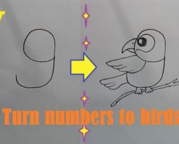 How to draw a bird by number Easy