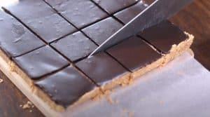 Healthy No-Bake Chocolate Peanut Butter Oat Bars