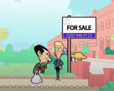 Mr Ben for Sale